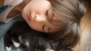 猫の食事と正しい食品選びに必要な知識と調子が悪い時の対応方法