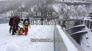 【必見】「雪崩」に巻き込まれた時で生き残る対処方法まとめ